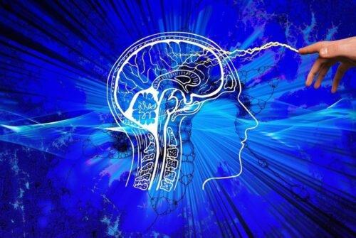 Comment booster son cerveau et sa mémoire ?