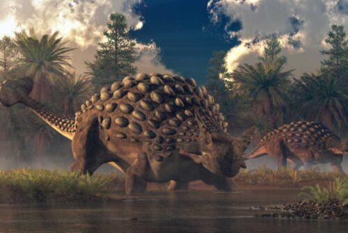Un dinosaure avec une «armure d'épines» découvert en Afrique